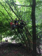 Freies Spielen im Wald